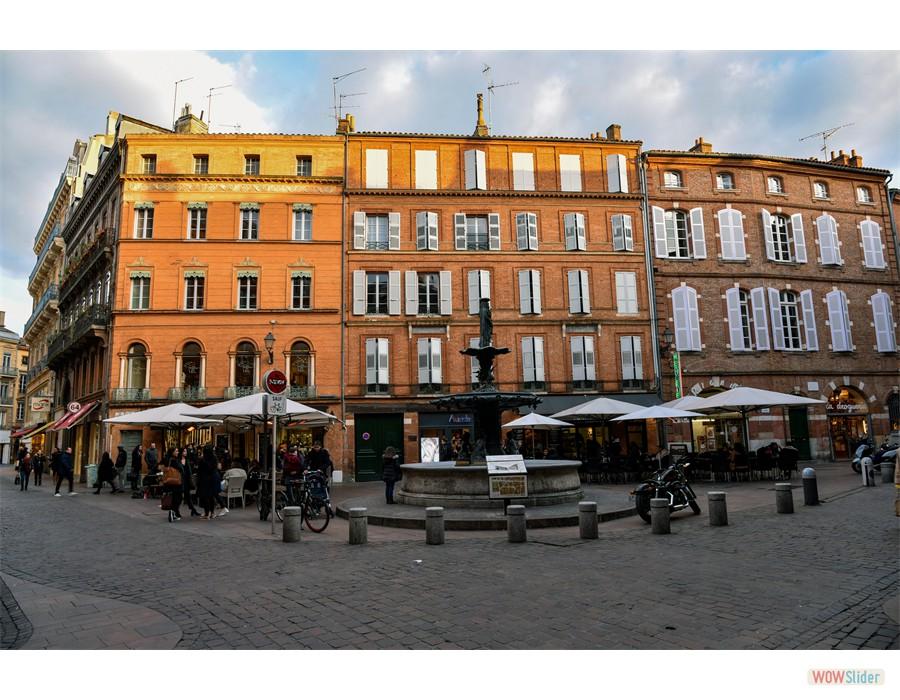 Toulouse, vile rose