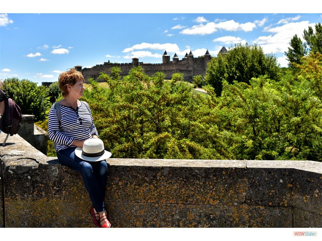 Vue sur la cité depuis le Pont Vieux